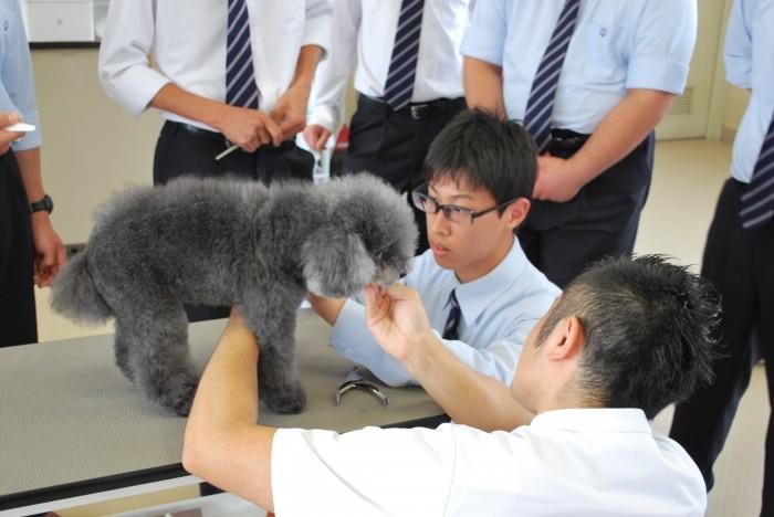 0601京都動物体験